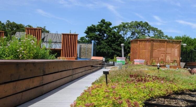 Ploche strechy ako vegetacne a zelene strechy