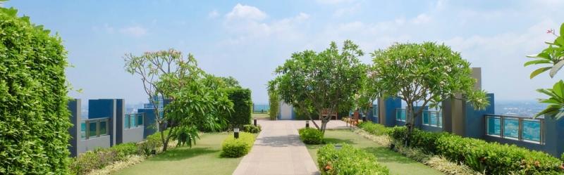 Zelene strechy s extenzivnou zelenou