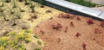 zasyp zelenej strechy strkom
