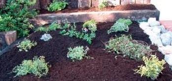 kotvenie vacsich rastlin do sietky