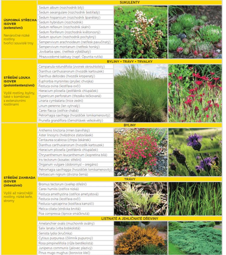 Vhodne rastliny pre vegetacne zelene strechy
