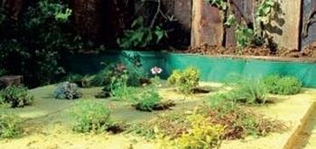 Vegetacna vrstva s rastlinami zelenej strechy