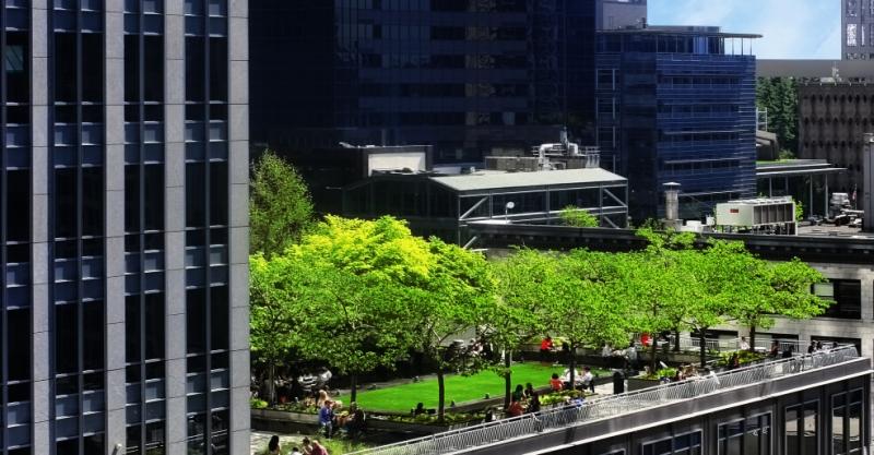 Zelena strecha s intenzivnou zelenou