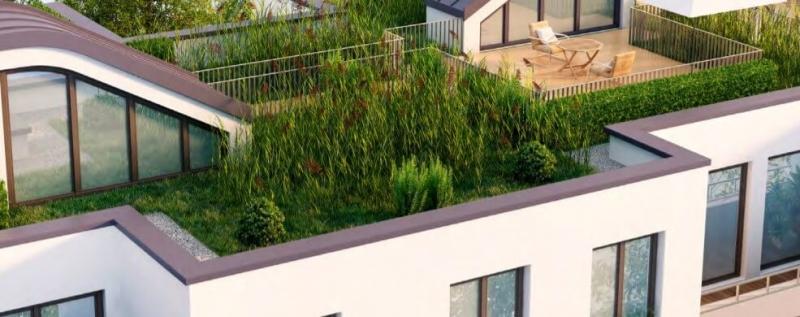 Zelene strechy