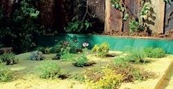 Postup vytvorenia zelenej strechy