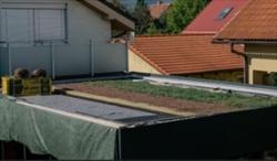 Zelena vegetacna strecha vrstvy